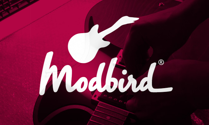 modbird-webseite-launch